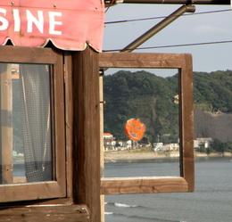 Kamakura Pumpkinb.JPG