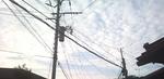 2010-10-05 16.12.38.jpg