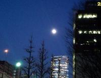 2011-01-18 17.20.28.jpg