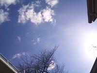 2011-03-23 08[2].11.48.jpg