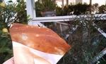 2011-04-12 15[1].40.33.jpg