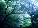 RainyDay.jpg
