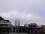 After the rain2.JPG