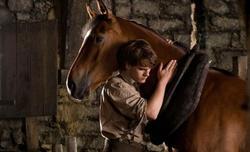 Warhorse3.jpg