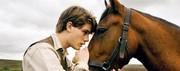 Warhorse4.jpg